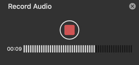 Record audio.png